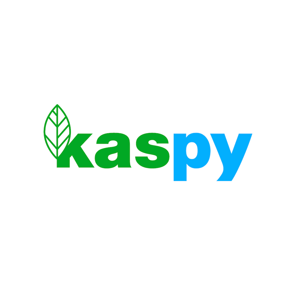 Kaspy Co.,Ltd